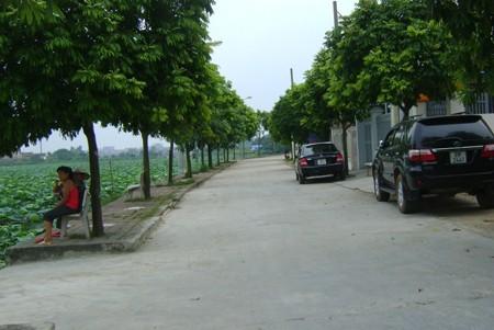 Внесение поправок в критерии для более эффективного строительства новой деревни - ảnh 1