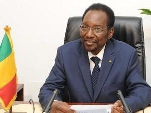 Президент Мали призвал сформировать правительство за 3 дня - ảnh 1