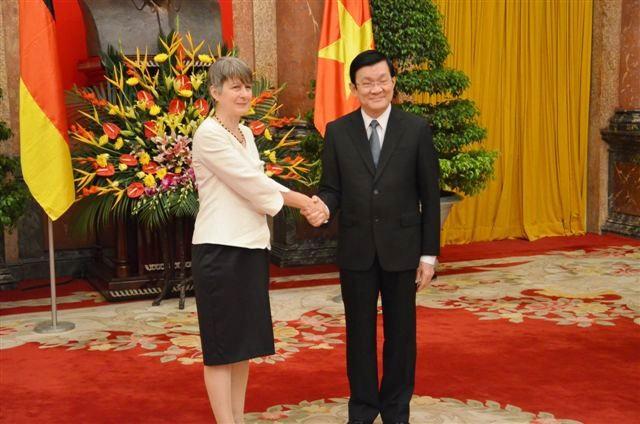 Президент СРВ Чыонг Тан Шанг принял верительные грамоты от новых послов стран - ảnh 1