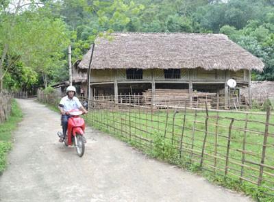 Строительство деревенских дорог в провинции Туенкуанг - ảnh 3