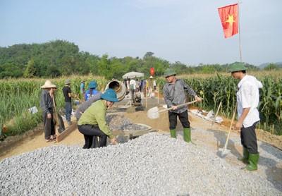 Строительство деревенских дорог в провинции Туенкуанг - ảnh 4