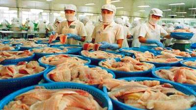 Экспорт сельскохозяйственной продукции Вьетнама в Россию - ảnh 1