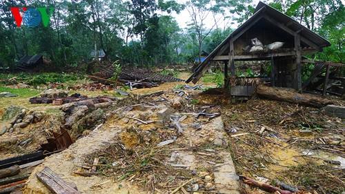 Провинции Центрального Вьетнама сильно пострадали от недавних тайфунов - ảnh 1