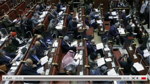 В Египте приняли проект исправленной конституции страны - ảnh 1