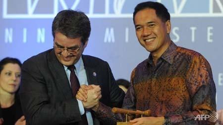 Балийский пакет соглашений принесёт выгоду развивающимся странам - ảnh 1