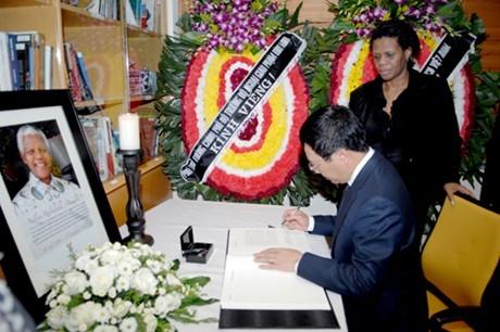 Вице-премьер СРВ Фам Бинь Минь почтил память Нельсона Манделы - ảnh 1