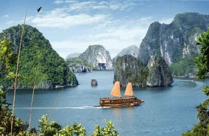 Членство Вьетнама в Комитете по всемирному наследию ЮНЕСКО - ảnh 1