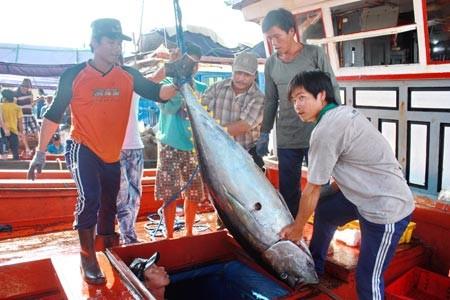Семинар «Оказание помощи рыбакам в развитии морской экономики» - ảnh 1