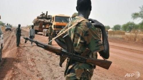 Мировое сообщество прилагает усилия для урегулирования конфликта в Южном Судане - ảnh 1