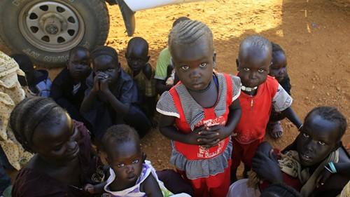 Мировое сообщество прилагает усилия для разрешения конфликта в Южном Судане - ảnh 1