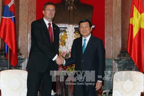 Президент Вьетнама принял министра обороны Словакии - ảnh 1
