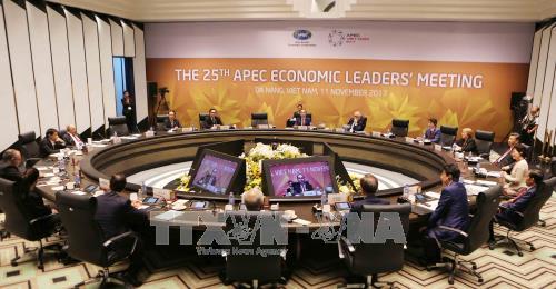 АТЭС 2017 способствует повышению позиций Вьетнама на международной арене - ảnh 1