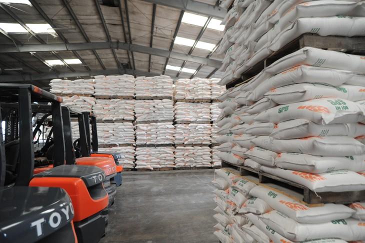Đưa gạo Việt Nam trở thành thương hiệu hàng đầu thế giới - ảnh 1