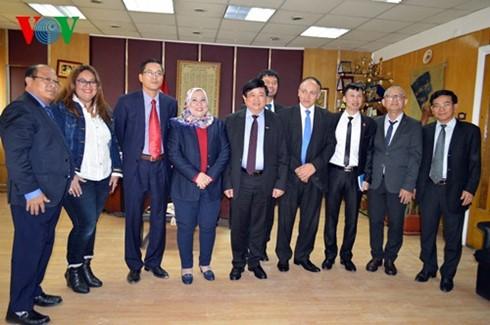 Việt Nam và Ai Cập thúc đẩy hợp tác trong lĩnh vực phát thanh - ảnh 1