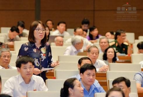 Quốc hội thảo luận về dự án Luật bảo vệ và phát triển rừng (sửa đổi) - ảnh 1