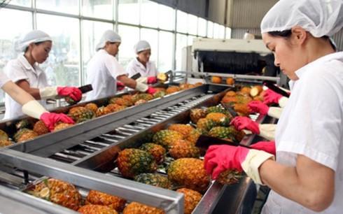 Ngân hàng thế giới đánh giá triển vọng kinh tế trung hạn của Việt Nam vẫn tích cực - ảnh 1
