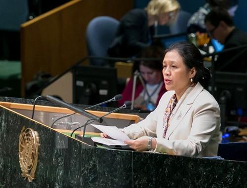 Việt Nam khẳng định lập trường ủng hộ giải pháp hai nhà nước - ảnh 1