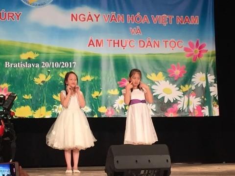 Sôi nổi Ngày văn hoá Việt Nam tại Bratislava, Slovakia - ảnh 11