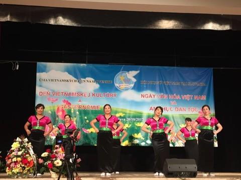 Sôi nổi Ngày văn hoá Việt Nam tại Bratislava, Slovakia - ảnh 12