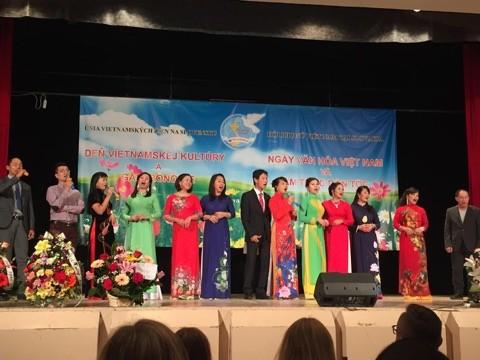 Sôi nổi Ngày văn hoá Việt Nam tại Bratislava, Slovakia - ảnh 4