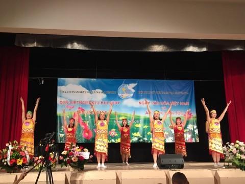 Sôi nổi Ngày văn hoá Việt Nam tại Bratislava, Slovakia - ảnh 7