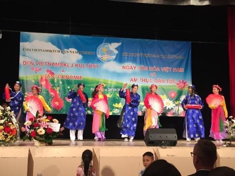 Sôi nổi Ngày văn hoá Việt Nam tại Bratislava, Slovakia - ảnh 8