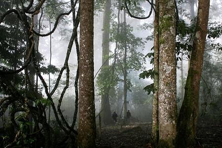 Tục cúng rừng, bảo vệ nguồn nước của người Hà Nhì - ảnh 2