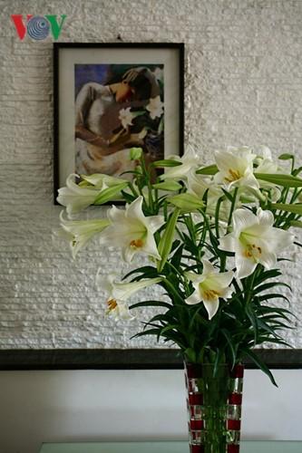 Tháng tư, hoa loa kèn về trên phố - ảnh 14