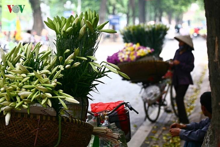 Tháng tư, hoa loa kèn về trên phố - ảnh 2