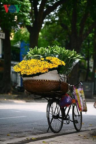Tháng tư, hoa loa kèn về trên phố - ảnh 3