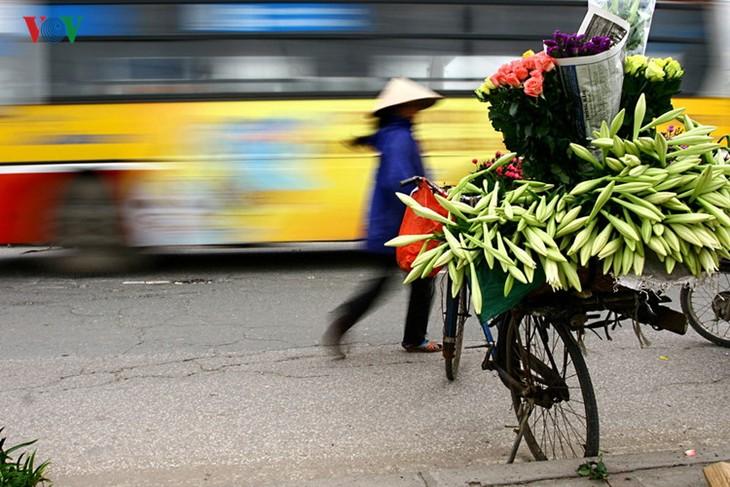 Tháng tư, hoa loa kèn về trên phố - ảnh 5