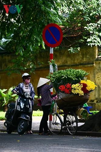 Tháng tư, hoa loa kèn về trên phố - ảnh 8