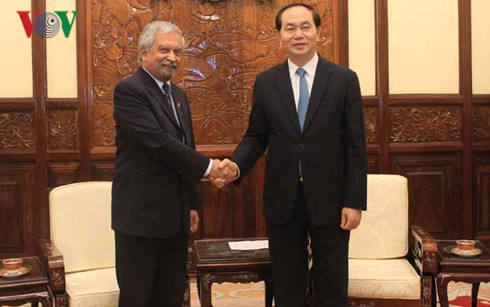 Chủ tịch nước tiếp Điều phối viên Thường trú Liên Hợp quốc, Trưởng đại diện UNDP tại Việt Nam - ảnh 1