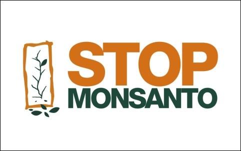 Monsanto phải có trách nhiệm giải quyết hậu quả môi trường ở Việt Nam - ảnh 1