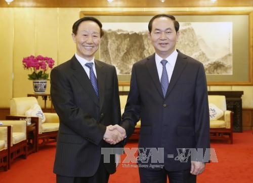 Chủ tịch nước Trần Đại Quang tiếp Phó Chủ tịch Chính hiệp Trung Quốc Vương Gia Thụy - ảnh 1