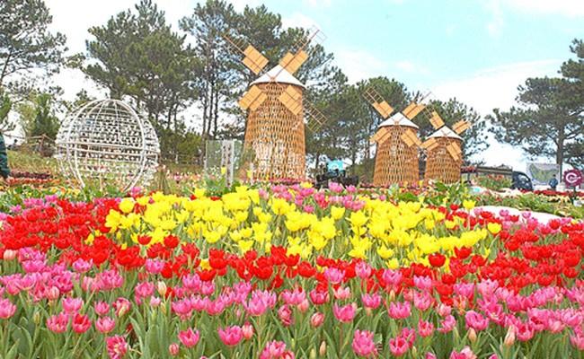 Festival hoa Đà Lạt lần thứ 7 sẽ diễn ra từ 23 đến 27/12 - ảnh 1