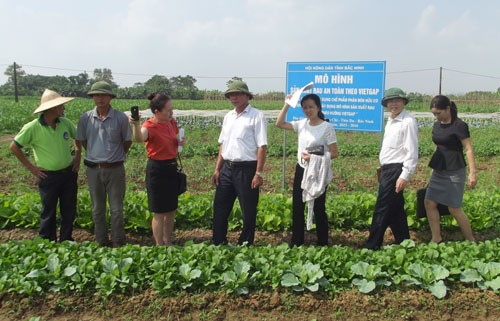 Deputy Prime Minister inspects food safety in Bac Ninh - ảnh 1