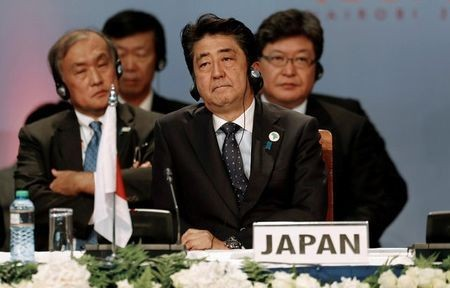 Japan's pivot to Africa policy - ảnh 1