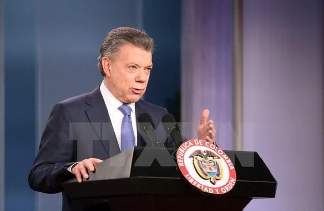2016 Nobel Peace Prize acknowledges Colombians' aspiration for peace - ảnh 1