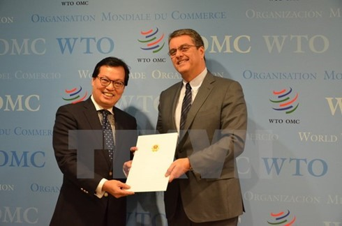 Vietnamese Ambassador presents credentials to WTO Director General  - ảnh 1