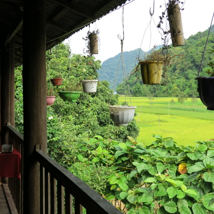 Homestay service for tourists to Ba Be Lake - ảnh 3