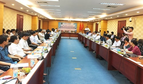 Non-governmental organizations join in environmental protection - ảnh 1