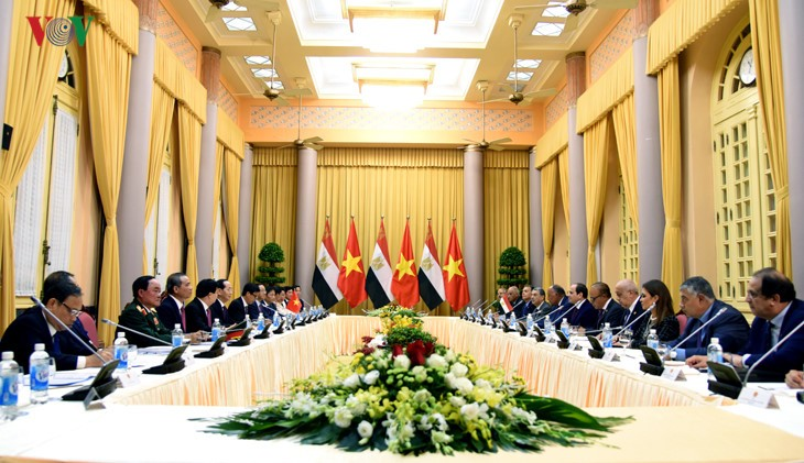 Vietnam, Egypt agree to boost win-win cooperation  - ảnh 1
