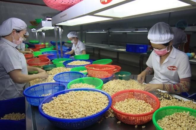 越南进出口额增长达到令人印象深刻的水平 - ảnh 1