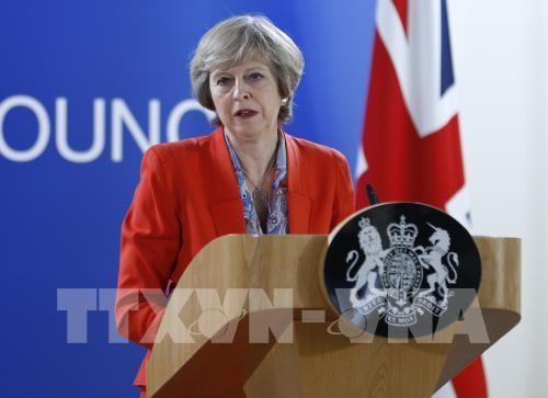 英国继续退欧进程   - ảnh 1