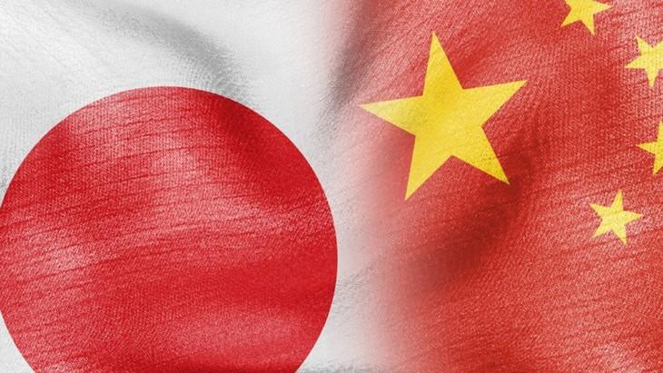 中国与日本学者呼吁加强双边关系 - ảnh 1