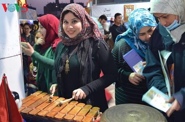 越南参加埃及萨奇亚国际文化节   - ảnh 1