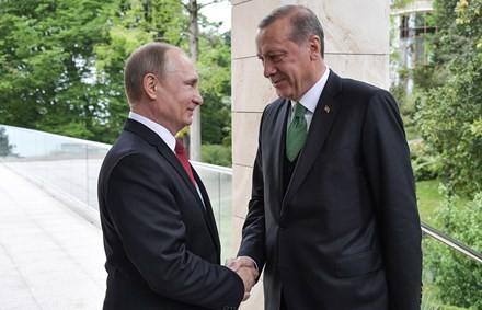 普京:俄土关系将恢复且不断发展 - ảnh 1