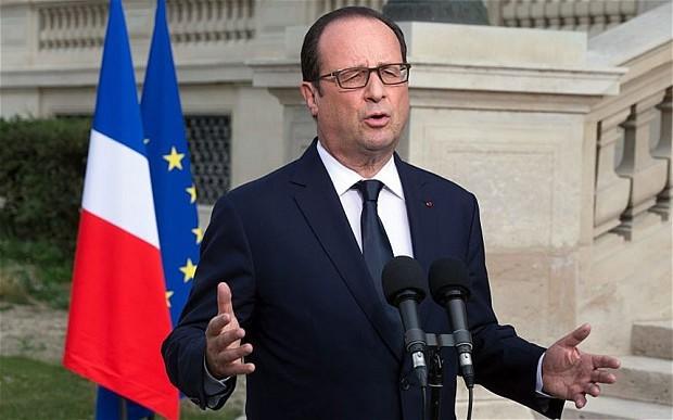 总统选举后法国政府辞职  - ảnh 1