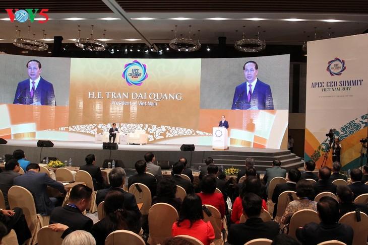 2017年亚太经合组织工商界领导人峰会讨论促进全球增长的内容 - ảnh 1